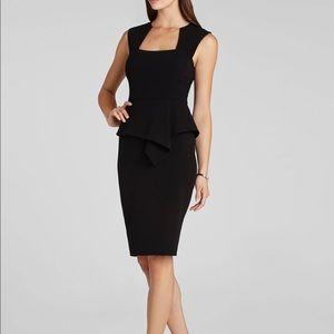 BCBG sleeveless sheath dress